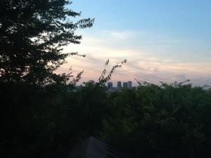 The medicinal evening view.