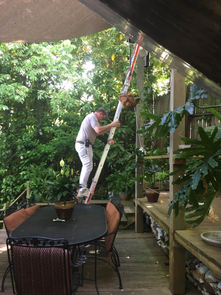 Dan and ladder