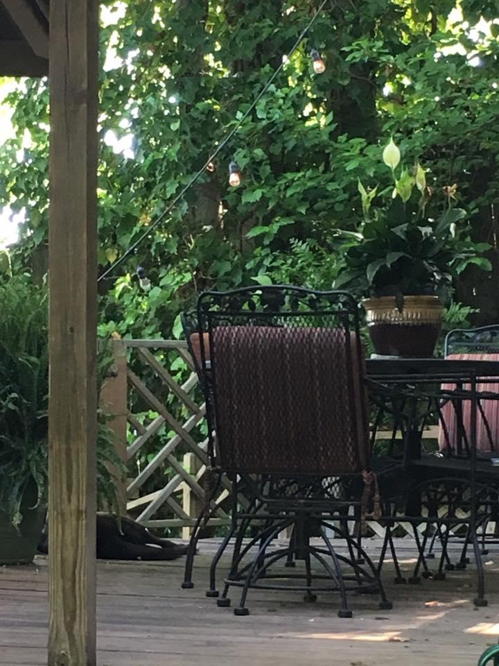 deck diningroom